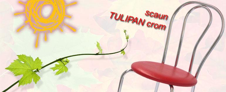 scaun Tulipan cromat