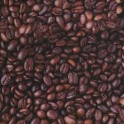 Stofa Print - Cafea